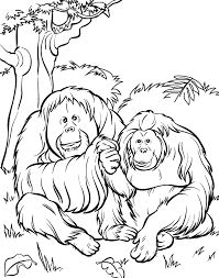 What a fun trip to the zoo. Free Printable Zoo Coloring Pages For Kids