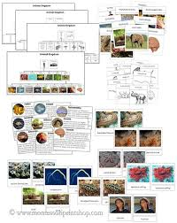What Are The Animal Kingdoms Chart Animal Kingdom Materials Printable Charts And Cards For