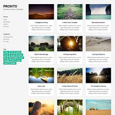 Wordpress Photo Gallery Theme Pronto Free Masonry Gallery Wordpress Theme