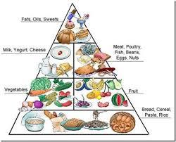 food pyramid 2014. Contemporary Food Foodpyramid With Food Pyramid 2014 H