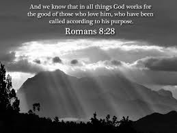 Bible Quotes About Life Interesting Bible Verse Romans 48248 Bible Quotes Of Life