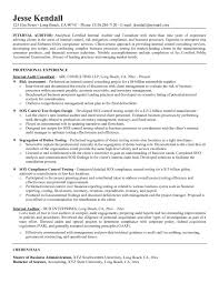 Auditor Resume Sample Auditor Resume Examples Beautiful Resume Template Internal Job 8