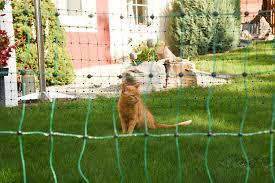 Katzenschutzgitter Katzenschutznetz Online Kaufen