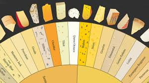 Charted Cheese Wheel Infographic How To Tell The Difference Between 66 Varieties