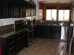 Matte Black Kitchen Cabinets Cabinets Drawer Best Black Kitchen Cabinets Design Ideas Black