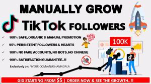 Grow your tiktok followers and likes by Anushamadala | Fiverr
