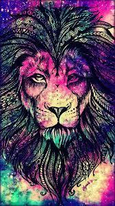 Colorful lion, Animal wallpaper ...