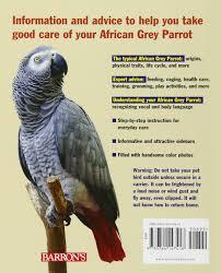 Baby African Grey Feeding Schedule African Grey Parrot