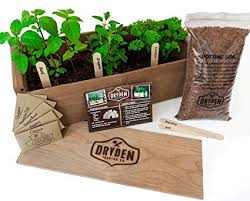 outdoor herb garden kit. Interesting Kit IndoorOutdoor Herb Garden Kit  Classic Wood Planter Box With Seeds  Plant And Outdoor P