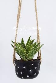 Hanging Planters Best 569 Plants Indoor Hanging Diy Pots Images On Pinterest