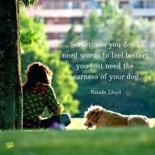 Dog Quotes Inspirational Gorgeous Love For A Dog Quotes With Inspirational Dog Owner Quotes Dog Quotes