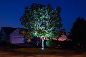 lighting outdoor trees. Amazing Home: Artistic Outdoor Up Lighting On Downlighting Uplighting When Do You Need Each In Trees