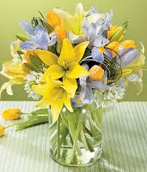 نتیجه تصویری برای گل های بسیار زیبا