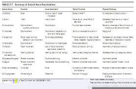 Burkets Oral Medicine Cranial Nerve Function
