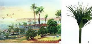 Природа Древнего Египта История Древнего мира Реферат доклад  1 Долина Нила Современный рисунок 2 Папирус