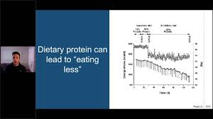 Protein Metabolism How To Optimize Protein Intake For Muscle Gain And Weight Loss