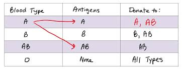 Blood Group Donate And Receive Chart 47 Actual Abo Blood System Chart