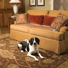 How to Keep Pets f Furniture