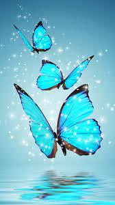 Butterfly   Papel de parede borboletas ...