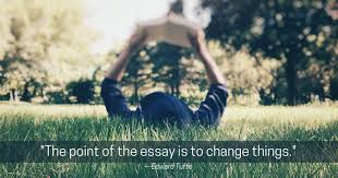 essay prep reading the essay brave writer in this class your teen will essays that reveal inform reflect and persuade