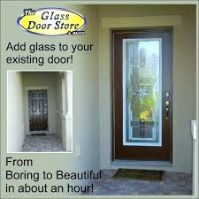 glass front door privacy s options ideas panel