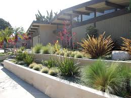 Small Picture Outdoor Garden Modern Drought Tolerant Landscaping With Gravel