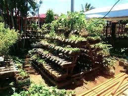 Container Garden Ideas Uk