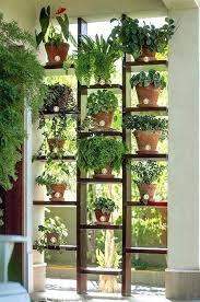 indoor window garden. glass window shelves for plants garden 9 best ideas about indoor on .