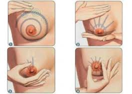 increase size how to increase breast size without surgery at home