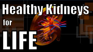 For Life How To Have Healthy Kidneys For Life Youtube
