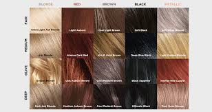 Hair Dye Colors Chart
