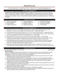 resume summary examples supply chain best online resume builder resume summary examples supply chain example of a supply chain manager cv template logistics chain procurement