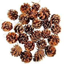 image is loading 24 pieces pine cones ornament natural pinecones with