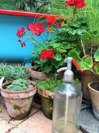 diy bathtub pond creative kitchen