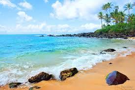 Laniakea Beach Haleiwa Oahu Hawaii Laniakea Beach Tran