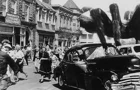 Image result for images from 1955 tarantula