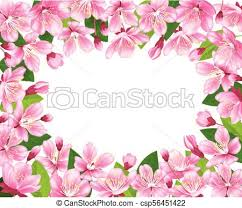 Cherry Blossom Background Pink Spring Flowers Frame Cartoon Style Vector Illustration