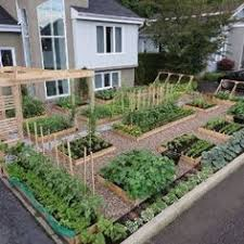 Small Picture Vegetable Garden Design Ideas Australia Excellent Raised Garden
