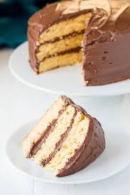 Simple Vanilla Cake Decorating Ideas Lovely The Most Amazing Vanilla