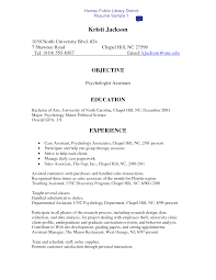 Resume Computer Skills Examples Job And Resume Template