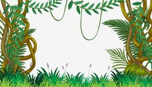 jungle background vector. Exellent Vector A Jungle Template With Vine Throughout Background Vector