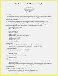 Business Analyst Roles And Responsibilities Resume Templates Senior ...