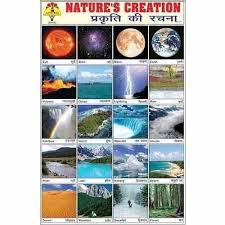 Nature Creation Sticker View Specifications Details Of