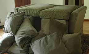 Couch Cushion Forts Anne Percoco
