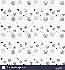 Paw Print Pattern Simple Decorating