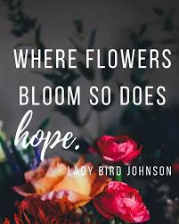 Image result for where there is flowers there is hope