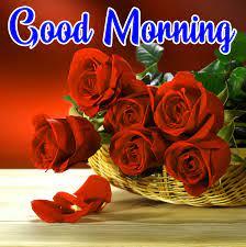 Good Morning Images Pics HD Download ...