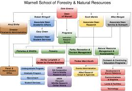 Organizational Chart Warnell School Of Forestry And