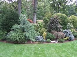 Small Picture 1050 best Gardening with conifers evergreens images on Pinterest