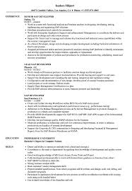 Sap Developer Resume Samples Velvet Jobs